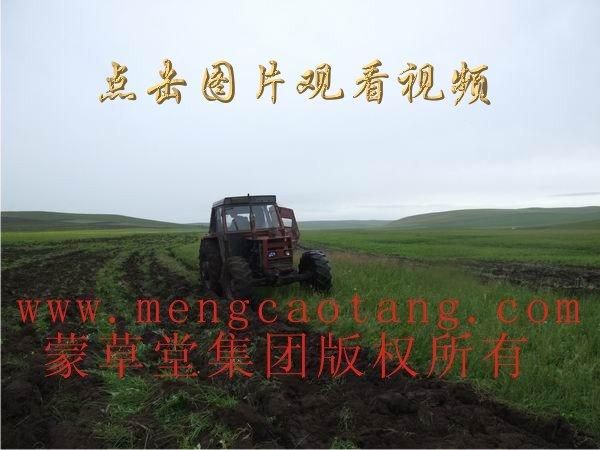 蒙草堂大型履带拖拉机正在亚青作业